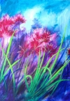 Marys Moments - Pink Nerine
