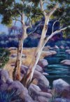 31-Above-the-Falls-Barwon-River-B-red-size